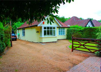 Thumbnail 2 bed detached bungalow to rent in Lake Road, Deepcut, Camberley