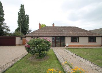 4 bed bungalow for sale in The Drift, High Road, Trimley St. Mary, Felixstowe IP11