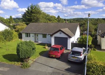 Thumbnail 3 bed bungalow for sale in Maes Ial, Llanarmon-Yn-Ial, Mold