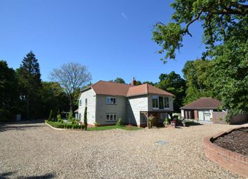 Thumbnail 5 bedroom detached house for sale in Lord Street, Hoddesdon