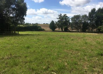 Thumbnail Land for sale in Land At Damgate Lane, Martham, Great Yarmouth, Norfolk