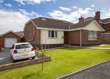 Thumbnail 5 bedroom detached bungalow for sale in Clanwilliams Court, Ballynahinch, Down
