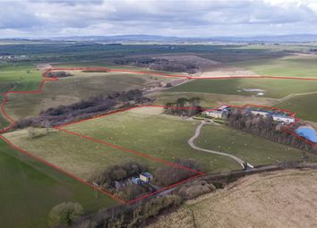 Thumbnail Land for sale in Stobswood, Morpeth, Northumberland