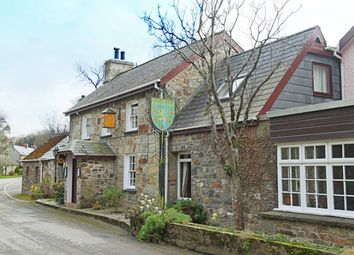 Thumbnail Pub/bar for sale in Nevern, Pembrokeshire