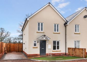 Thumbnail 3 bed semi-detached house for sale in Garway Common, Garway, Hereford