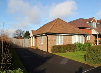 Thumbnail 2 bed detached bungalow for sale in Freshwater Terrace, Four Marks, Hampshire