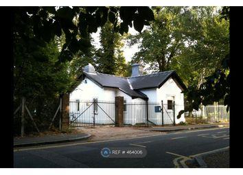 Thumbnail Room to rent in Wildcroft Road, Putney Heath
