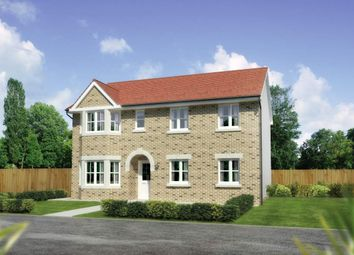 "Thumbnail 4 bed detached house for sale in ""Hollandswood"" at Cathkin Road, Carmunnock, Clarkston, Glasgow"