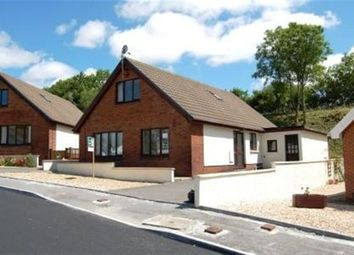 Thumbnail 4 bed bungalow to rent in Nant Yr Ynys, Llanpumsaint, Carmarthen