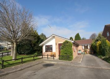 Thumbnail 3 bedroom detached bungalow for sale in 16, Brookfield Ave, Barry, Barry, Vale Of Glamorgan