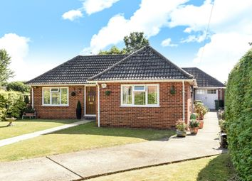 Thumbnail 4 bedroom bungalow for sale in Long Lane, Tilehurst, Reading