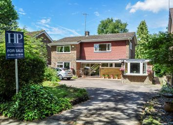 Thumbnail 4 bed detached house for sale in Milton Mount Avenue, Crawley