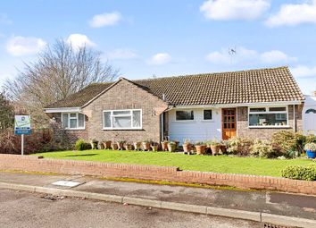 Thumbnail 4 bed bungalow for sale in Chestnut Way, Henfield