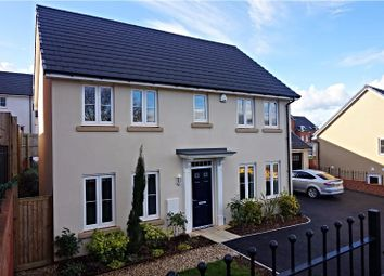 Thumbnail 4 bed detached house for sale in Clover Drive, Dawlish