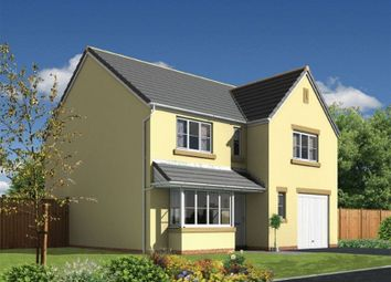Thumbnail 4 bed detached house for sale in The Shakespeare, Withnoe Farm, Launceston