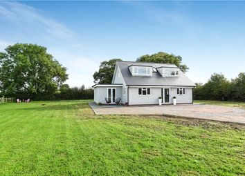 Thumbnail 3 bed equestrian property for sale in Clayhidon, Cullompton, Devon