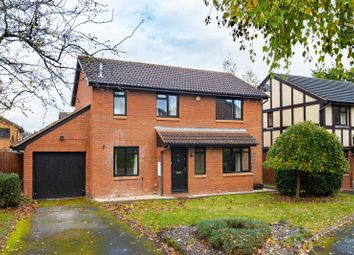 Thumbnail 4 bed detached house to rent in 68 Wyedean Rise, Belmont, Hereford