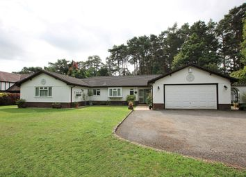 Thumbnail 4 bed bungalow for sale in The Chase, Ashley, Ringwood