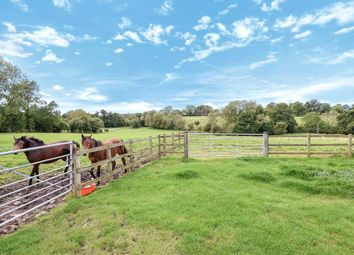 Thumbnail 4 bed detached house for sale in Little Thirkleby, Thirkleby, Thirsk