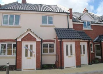 Thumbnail 2 bed flat to rent in Kingfisher Close, Stalham, Norwich