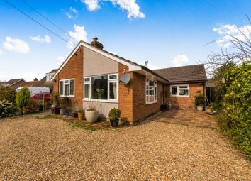 Thumbnail 3 bedroom bungalow for sale in Lower Platts, Ticehurst, East Sussex