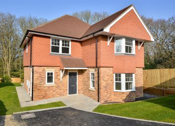 Thumbnail 5 bedroom detached house for sale in St. Helens Court, St. Helens Park Road, Hastings