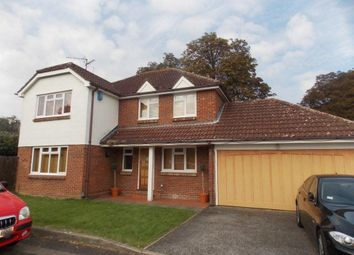 Thumbnail 4 bed property to rent in Wyldwood Close, Harlow