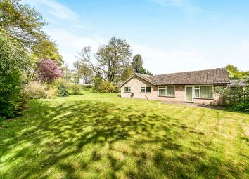 Thumbnail 4 bedroom detached bungalow for sale in The Limes, Rushmere St. Andrew, Ipswich