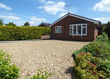 Thumbnail 3 bed bungalow for sale in St. Ives, Ringwood, Dorset