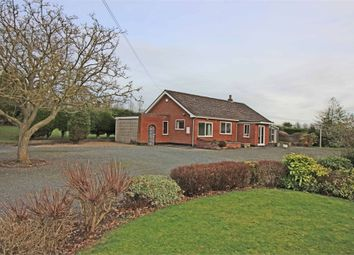 Thumbnail 2 bed detached bungalow to rent in Ashby Road, Statfold, Nr Tamworth, Warwickshire