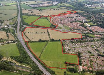 Thumbnail Land for sale in Round House Way, Cringleford, Norwich