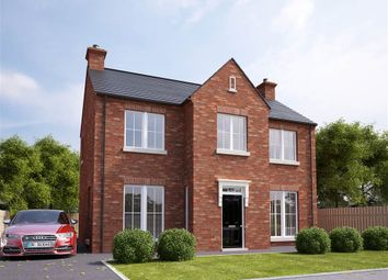 Thumbnail 4 bed detached house for sale in The Cutts, Dunmurry, Belfast