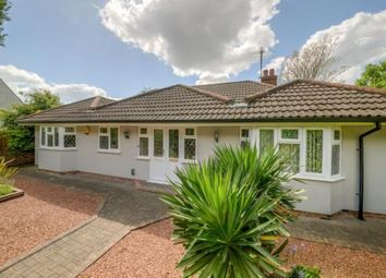 Thumbnail 3 bed bungalow for sale in Wilstead Road, Elstow, Bedford, Bedfordshire