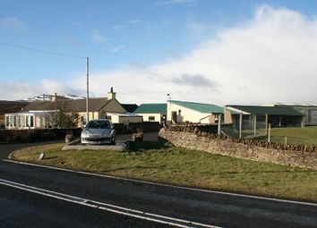 Thumbnail 2 bed cottage for sale in Dunbeath, Caithness