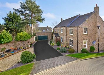Thumbnail 5 bed detached house for sale in Old House Gardens, West Haddlesey, Selby