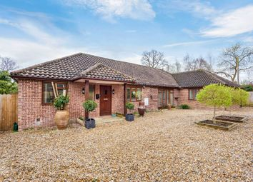 Thumbnail 3 bed detached bungalow to rent in The Drive, Loxwood, Billingshurst