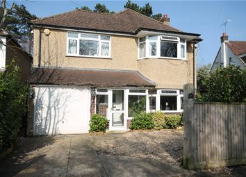 Thumbnail 4 bed detached house to rent in The Spinney, Epsom