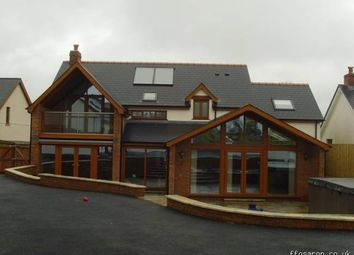 Thumbnail 5 bed detached house for sale in Beulah, Newcastle Emlyn
