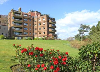 Thumbnail 2 bed flat for sale in Cedar Lodge, Lythe Hill Park, Haslemere, Surrey
