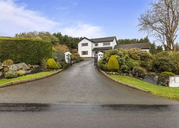 Thumbnail 5 bed detached house for sale in Ballymaglave Road, Ballynahinch, Down