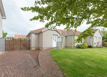 Thumbnail 2 bed semi-detached bungalow for sale in Teal Place, Montrose