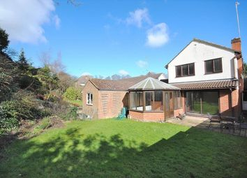 Thumbnail 4 bed detached house to rent in Elm Road, Bishops Stortford, Herts
