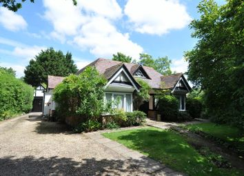 Thumbnail 4 bed detached bungalow for sale in Southampton Road, Lyndhurst