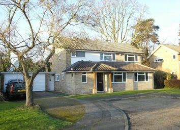 Thumbnail 4 bed detached house for sale in Birch Close, Send, Woking