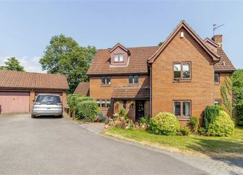 Thumbnail 6 bed detached house for sale in Shepherd Drive, Langstone, Newport