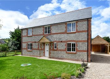 Thumbnail 4 bed detached house for sale in Acreman Street, Cerne Abbas, Dorchester