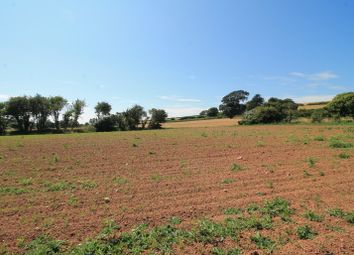 Land for sale in Chillington, Kingsbridge TQ7