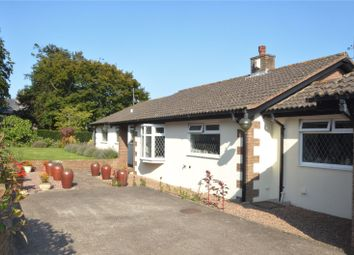 Thumbnail 4 bed bungalow for sale in Rewe, Exeter, Devon
