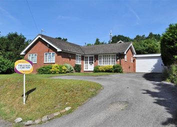 Thumbnail 3 bed detached bungalow for sale in Middle Bourne Lane, Lower Bourne, Farnham