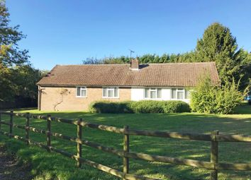 Thumbnail 3 bed detached bungalow for sale in Rivendell, Friars, Braughing, Ware, Hertfordshire